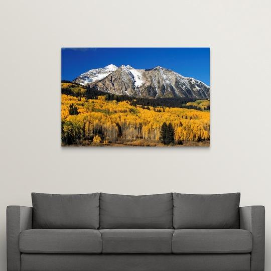 """/""""Aspen Trees In Autumn Colorado/"""" Canvas Art Print Rocky Mountains"""