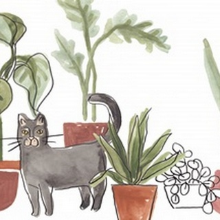 Purrfect Plants Collection A