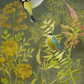 Birding I