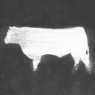 Charcoal Bovine Study IV