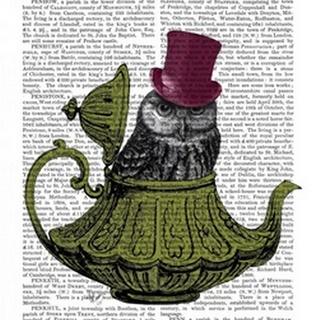 Owl In Teapot