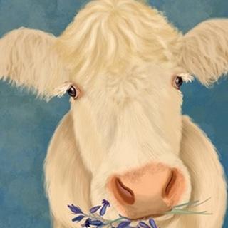 Cow Cream, Bluebells