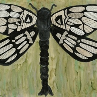 Dragonfly Text