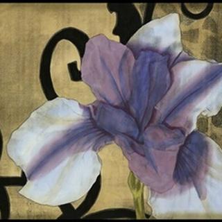 Iris and Scrolls II