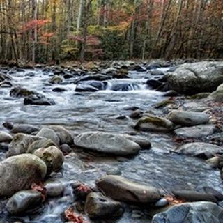 Porter's Creek II