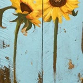 Sunflowers on Wood III
