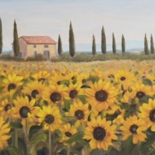 Tuscan Memories I