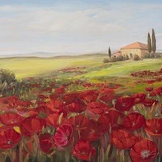 Tuscan Memories II