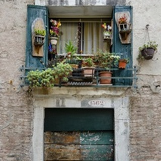 Italian Window Flowers I