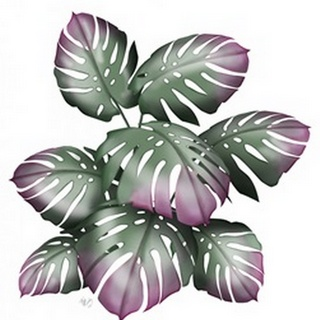 Monstera Plant, Pink and Green