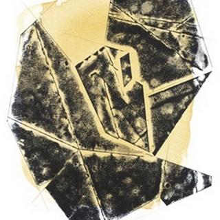 Paloma Abstract I