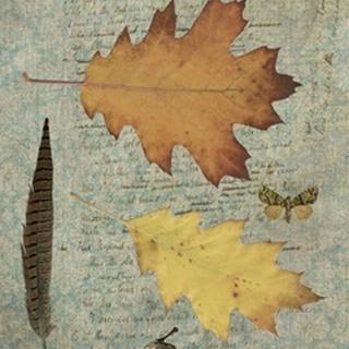 Autumn Leaf III