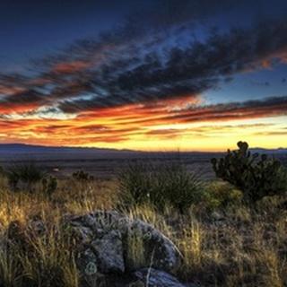 Sunset in the Desert IV