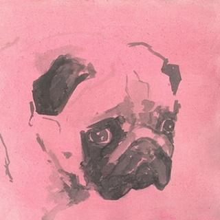 Pop Modern Dog IV