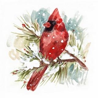 The Cardinal II