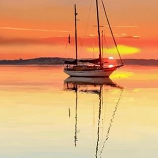 Sailing Portrait V