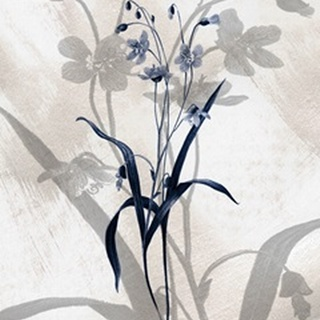 Indigo Bloom III