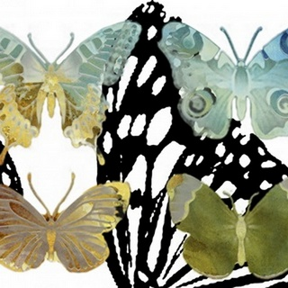 Layered Butterflies IV