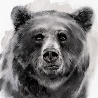 Bear Grin II