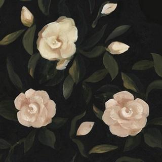 Evening Gardenias II
