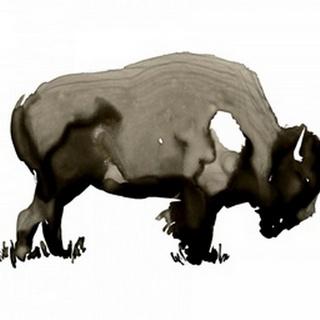 Monochrome Bison I