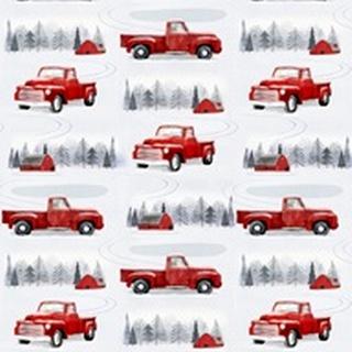 Snow Country Collection E