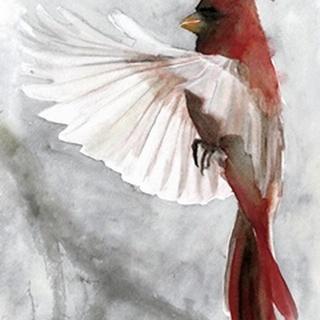 Cardinals II