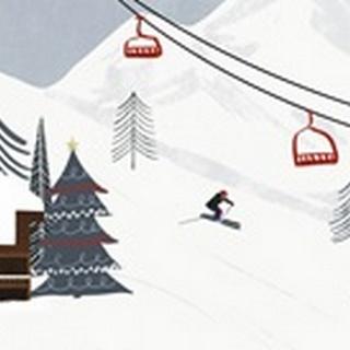 Ski Slope Collection D