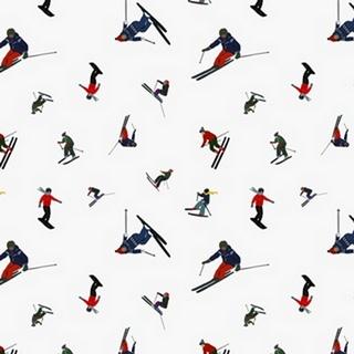 Ski Slope Collection H