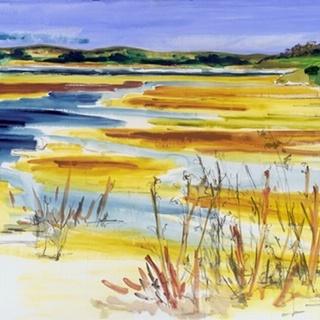 Bright Marsh I
