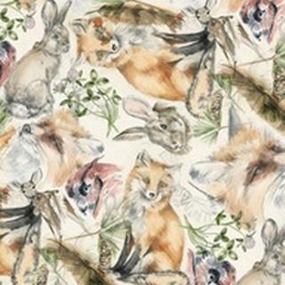 Wildlife Journal Collection E