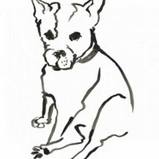 WAG: The Dog VIII