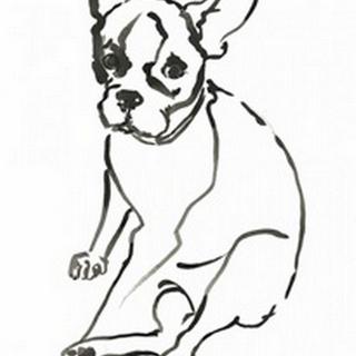 WAG: The Dog VI