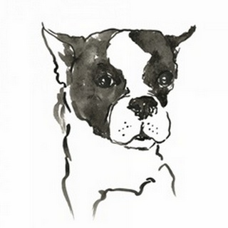 WAG: The Dog V