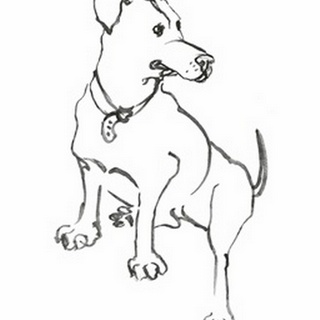 WAG: The Dog IV