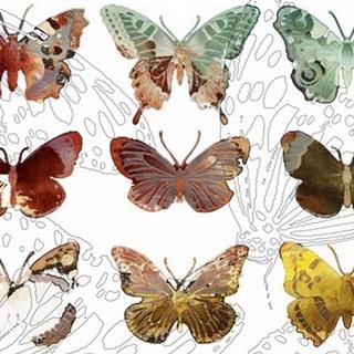 Layered Butterflies II