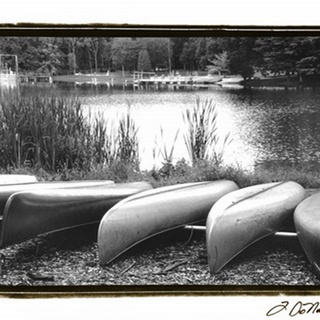 Lake Living I