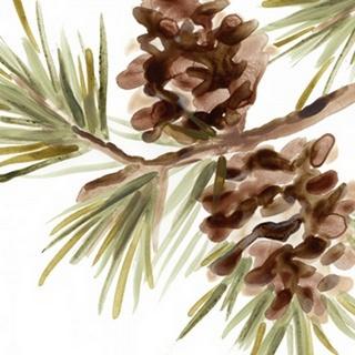 Simple Pine Cone IV