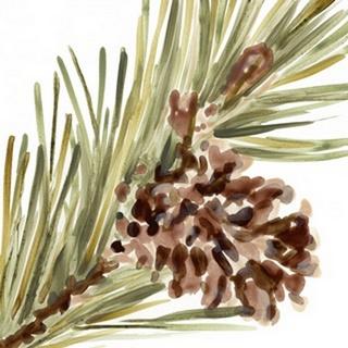 Simple Pine Cone I