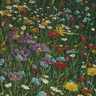 Bright Wildflower Field II