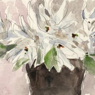 Magnolia Watercolor Study I