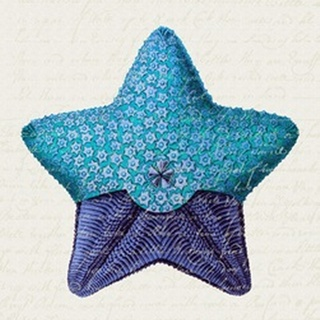 Starfish in Shades of Blue a