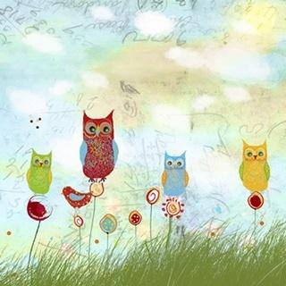 Owl Land