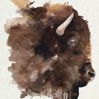 Watercolor Bison Profile I