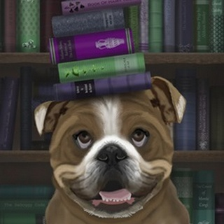 English Bulldog And Books