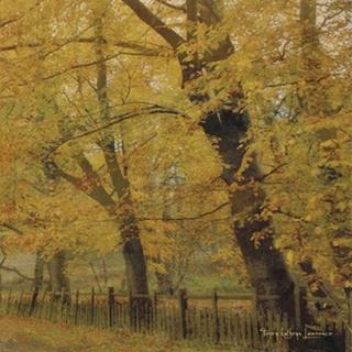 English Countryside II