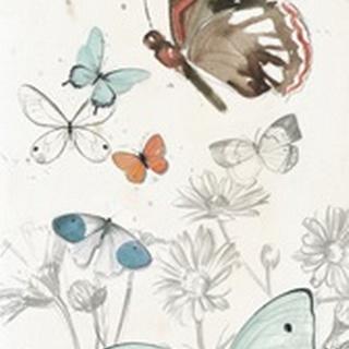 Summer Butterflies Collection B