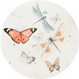 Summer Butterflies Collection C