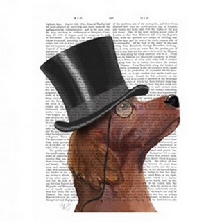 Red Setter, Formal Hound and Hat