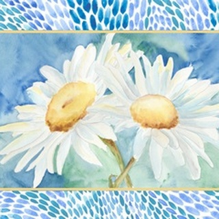 Daisy Sunshine Collection A